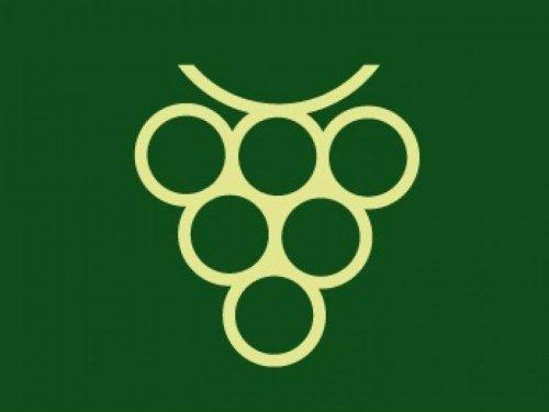 Slavnosti vína - zkúšáme